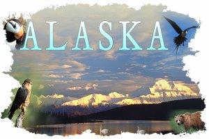 alaska_splash